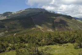 Cordal de la Pinilla