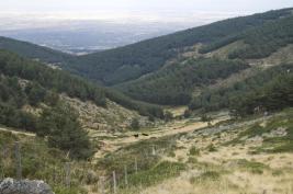Primer valle
