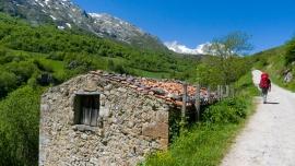Camino a la Terenosa