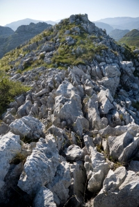 Cerro Ortigales