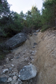 Arroyo seco