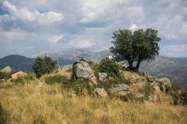 Cumbre del Cerro del Castillo